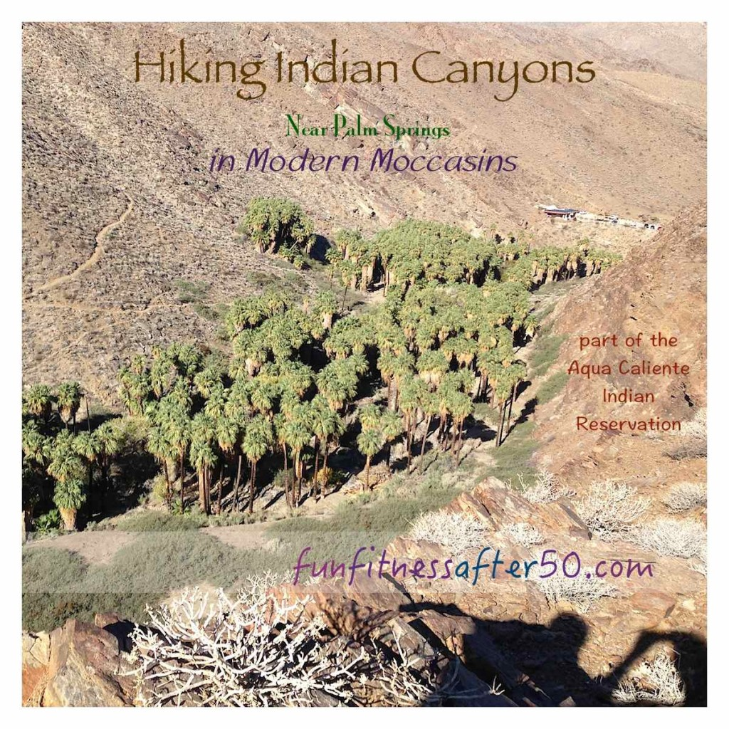 Hiking Indian Canyons Near Palm Springs in Modern Moccasins