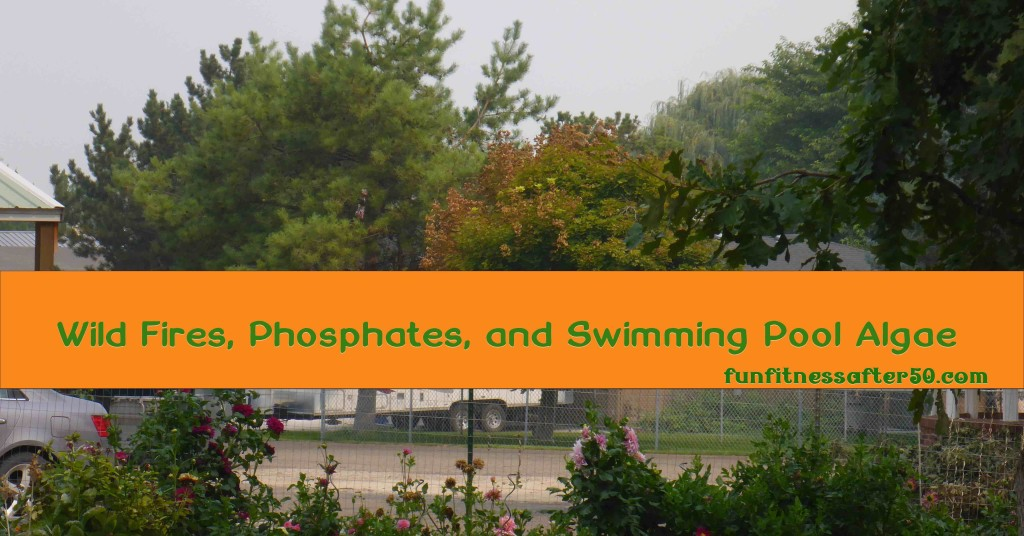 Wild Fires, Phosphates, and Swimming Pool Algae